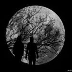 Silhouette Moonscape